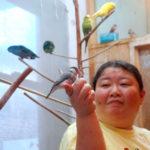 梅川千尋(しゃべる鳥の世界)経歴や店の場所、インコアイスの購入先は?【マツコの知らない世界】